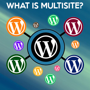 What is Multisite?